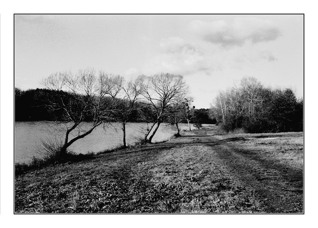 the long walk in the last days of the year meets a landscape in black and white