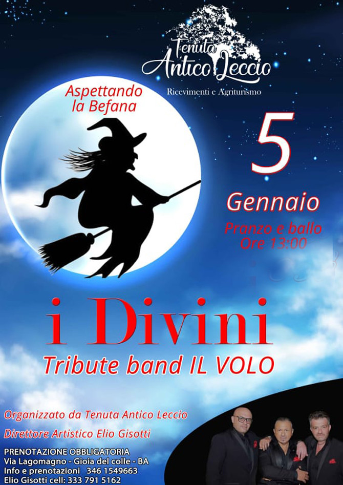 i Divini tribute band il Volo