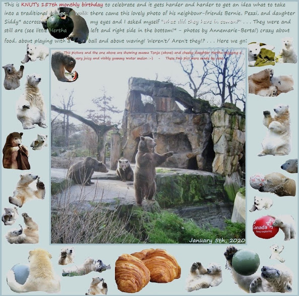 KNUT_157thMonthly_5January2020_COLLAGE_Sa_00h15_200104