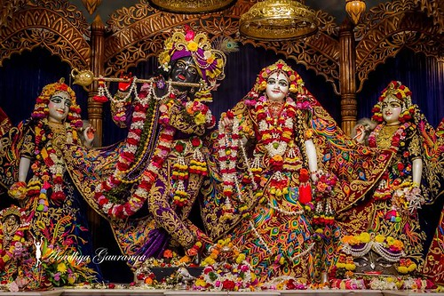 ISKCON Mayapur Deity Darshan 04 Jan 2020