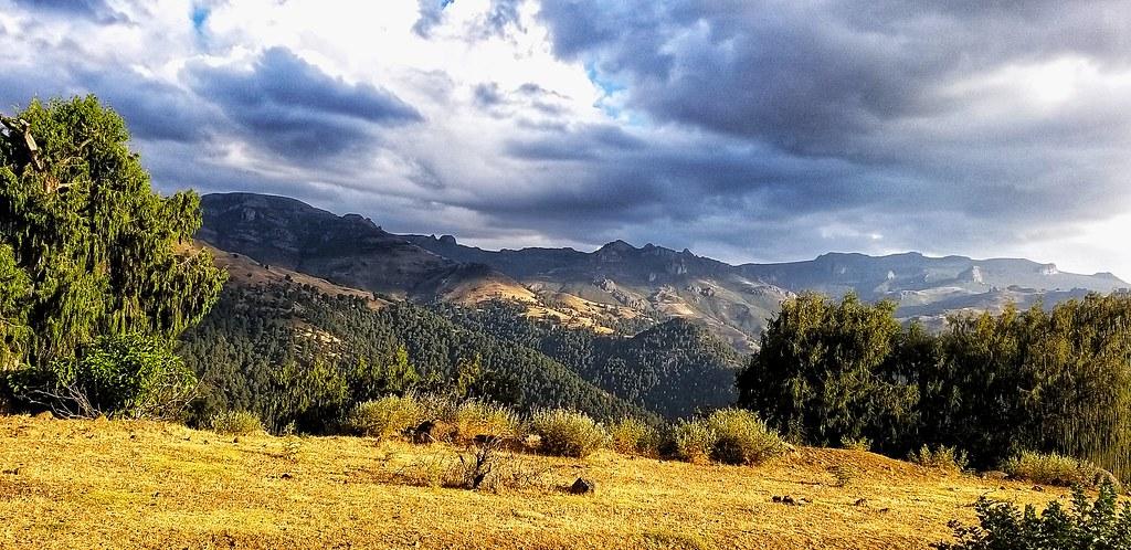 Bale Mountains National Park Tours
