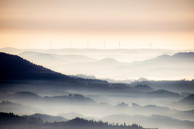 Über den Wolken - Im Schwarzwald