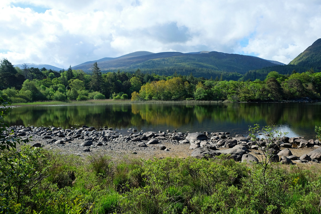 Killarney National Park, Ireland