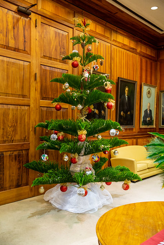 Hawaiian Christmas Tree in Governor's Office