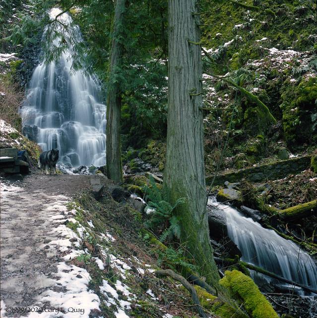 Shamus at Fairy Falls 1999