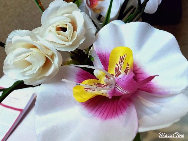 Flor y Orquídea...