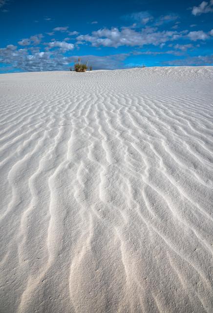 White Sands Blue Skies