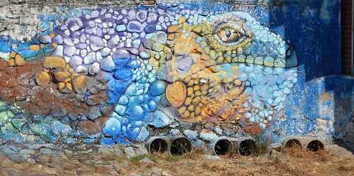 An iguanas painted on a stone wall in Manzanillo, Mexico