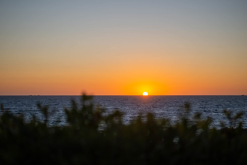 westernaustralia sunset family nikondf sigma70mmmacro