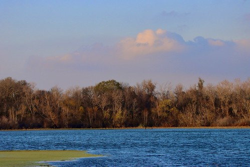 sugarland landscape cullinanpark lake trees clouds sky