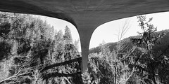 Underneath Salginatobel bridge