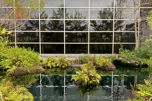 Harn Asian Water Garden