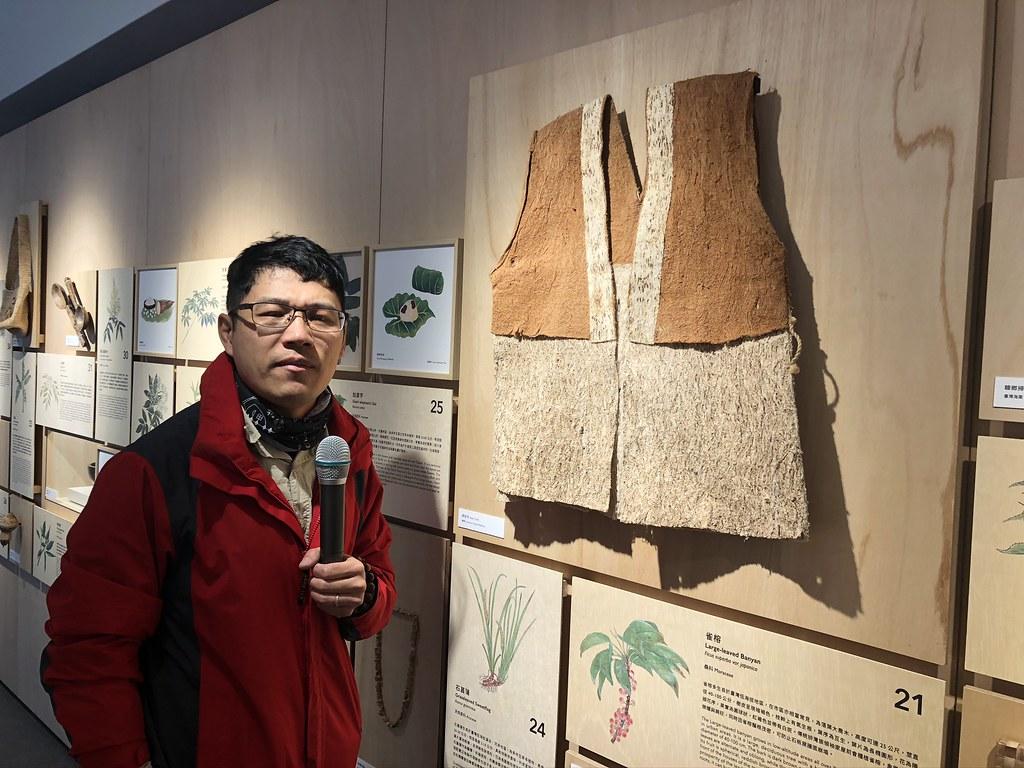 楊智凱說明,傳統阿美族樹皮衣是使用構樹,但也可使用雀榕。展示的樹皮衣就是由這兩種植物所構成:灰白色的為構樹,咖啡色的為雀榕。攝影:廖靜蕙