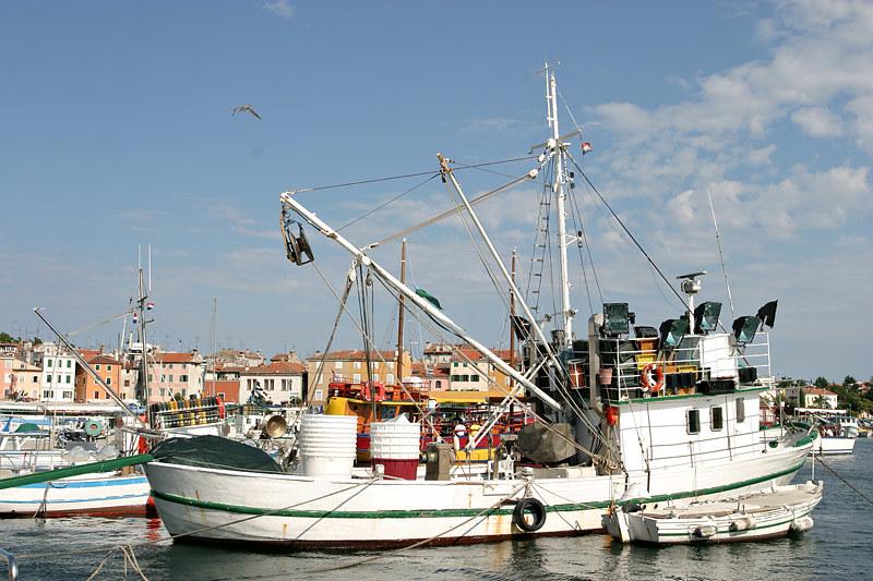 Fisherboat, Rovinj, Croatia