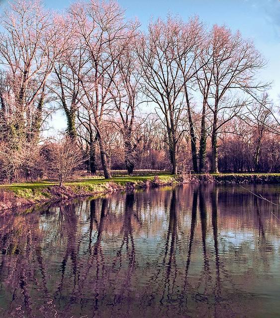 2019 12 30_3925_ L'étang du Bourg