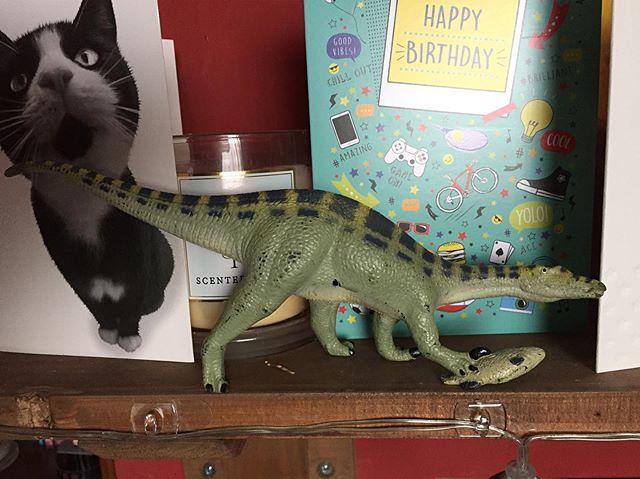 Birthday Dinosaur!