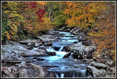 smokymountainnationalpark thesinks meigs creeklittle river gorgeautumnwaterwhitelong exposurenaturestreamgorgerockstreesforestnatureoutsideoutdoorlandscapefoliageautumnyellowgoldenlighteveningcanoneosslr6d24105national park national orange red beauty beautiful