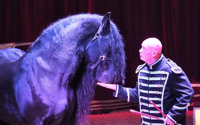 The Friesian Stallion Artus - Christmas Circus Barus - Show in Hanau-Steinheim - January 4, 2020