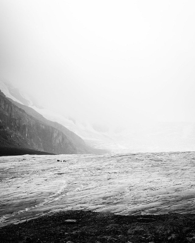 toe of the Athabasca glacier