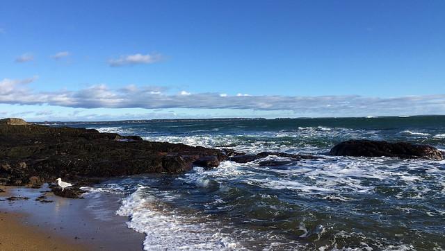 Coastal Maine Series no. 1