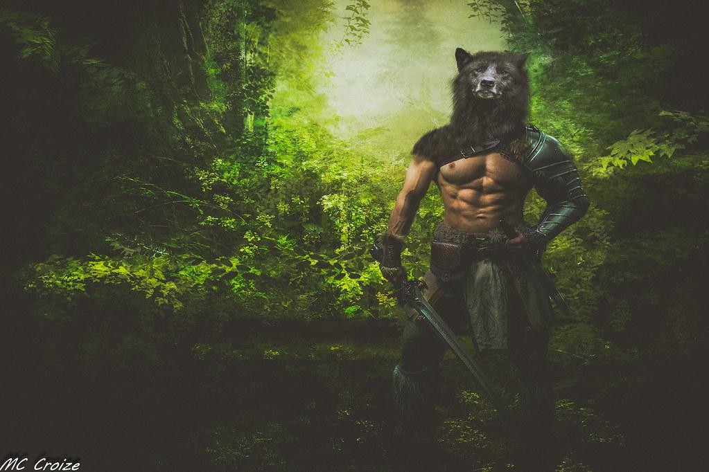 Warrior 49334523972_98cdea611c_b