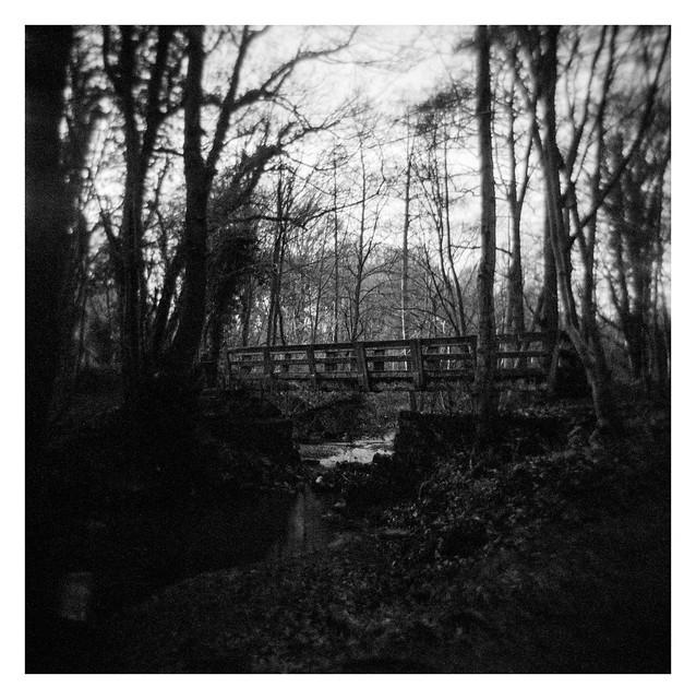 FILM - Bridge over the Moss