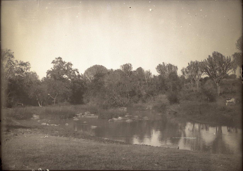 480. Река Бадделе