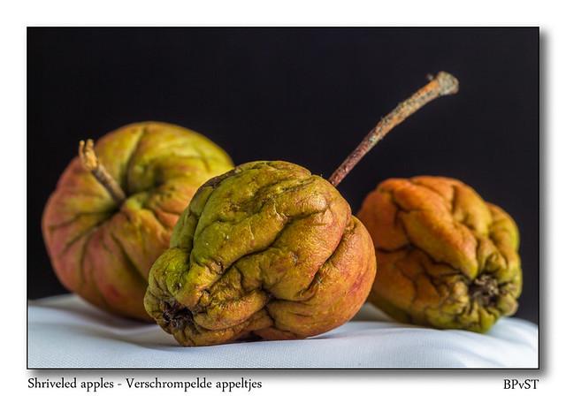 Shriveled apples in home studio