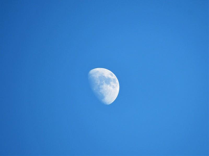Moon 05.01 (1)