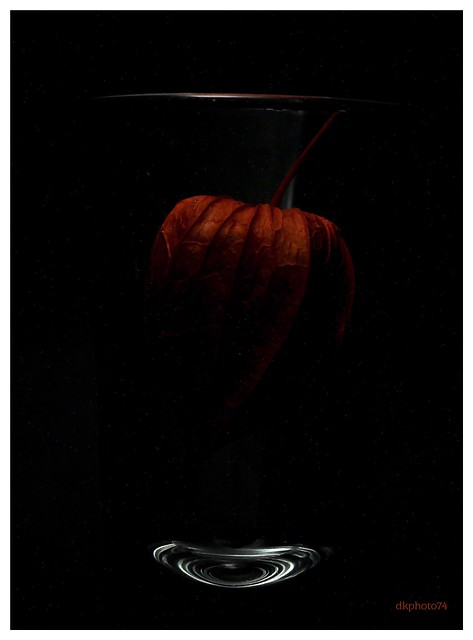 physalis in a glas