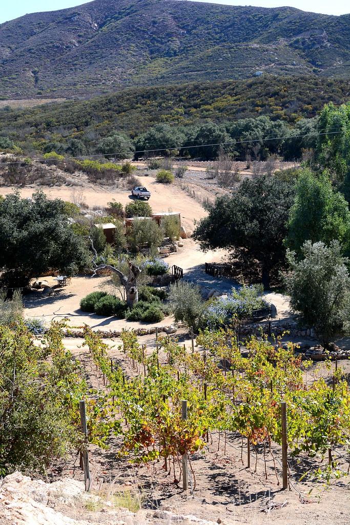 Clos de Tres Cantos - Valle de Guadalupe