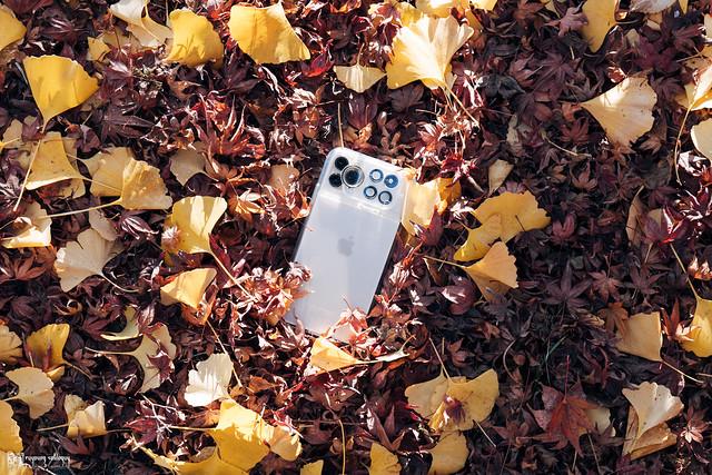 繽紛世界,盡收掌心:ShiftCam 旅行攝影組 for iPhone 11 Pro | 72
