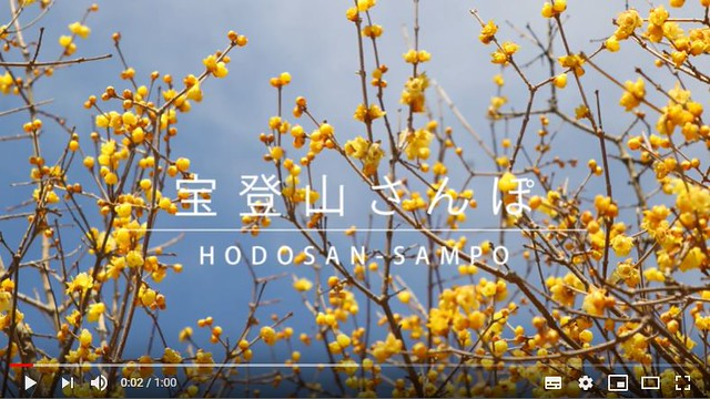 【YouTube】沿線PR動画をアップ☆『宝登山さんぽ』をテーマにロウバイや動物園を紹介