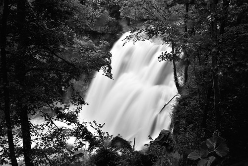 65 azimuth85 bedfordshale bereasandstone blackwhite brandywinecreek brandywinefalls brandywinegorgetrail brandywinegorgetrailloop camranger capturenx2edited clevelandshale cloudy colorefexpro creek cuyahogavalleynationalpark day6 imagecapturewithcamranger landscape longexposure lookingene lookingthroughtrees lowerpeninsulaheartland midwestgreatlakesarea mostlycloudy nature nikond800e northamericaplains ohiowabasheriearea outside overcast project365 talltrees talltreesallaround travel trees triptogatewaymammothcuyahoganationalparks waterfall waterfalls ohio unitedstates