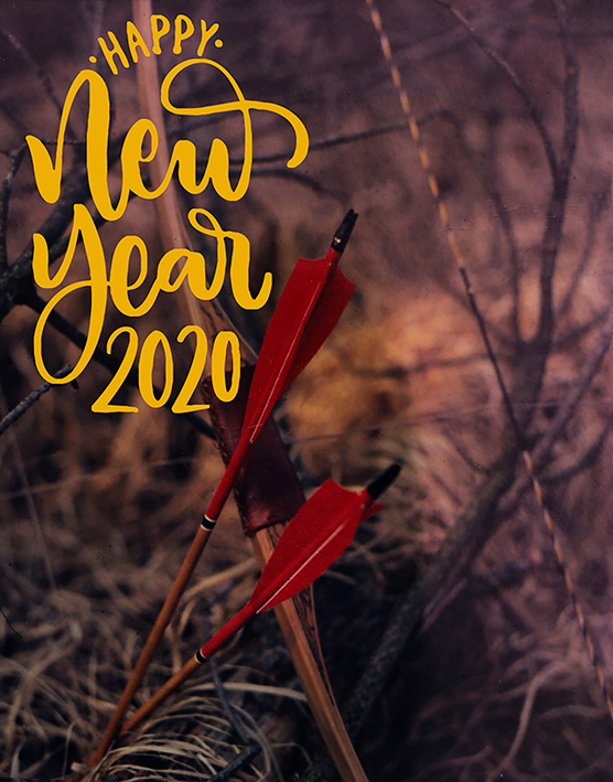 Bonne année 2020 49338121821_11d8ec2e1e_o
