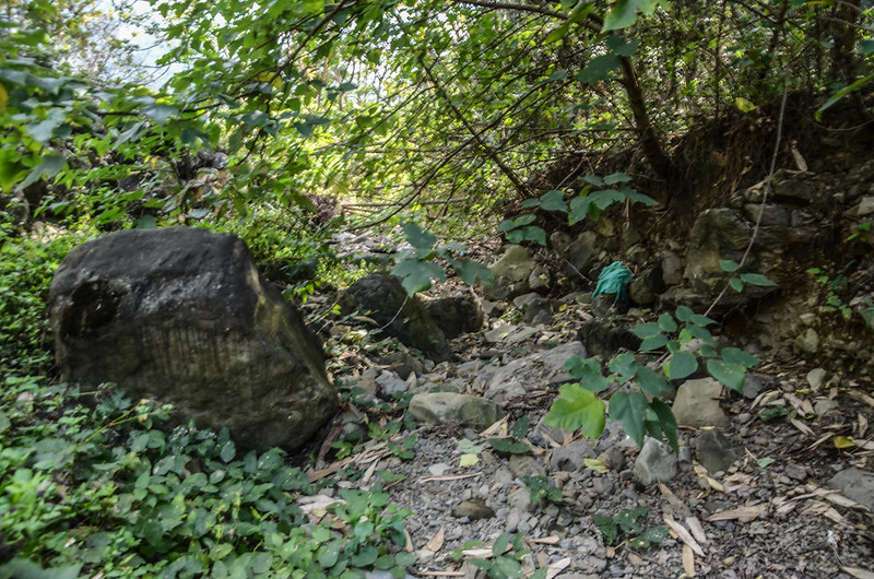 良楠山東南峰河床路段