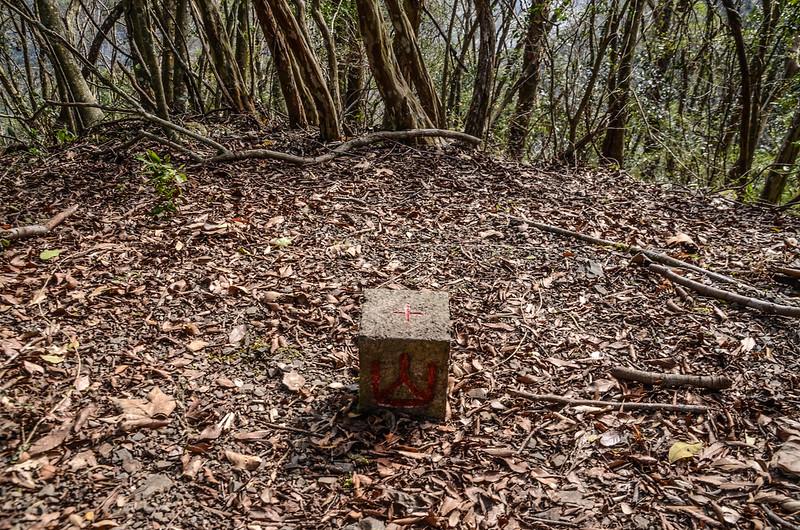 良楠山東南峰(樟山)冠字補近(39)山字森林三角點(Elev. 970 m)