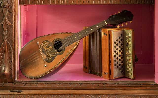 Mandolin with accordion