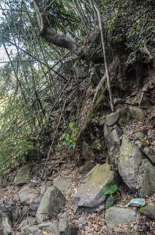 良楠山東南峰河床上切竹林處 (2)