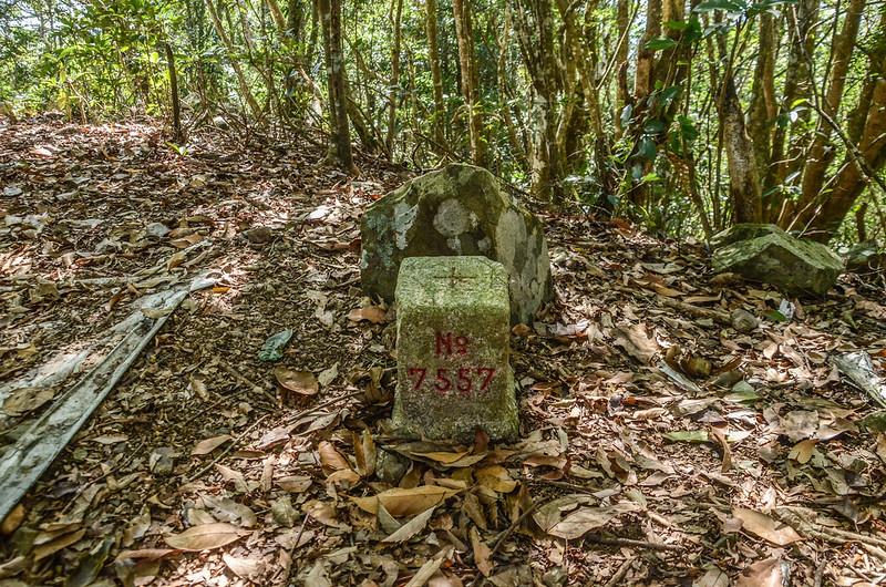 良楠山三等三角點(#7557 Elev. 1588 m) (3)