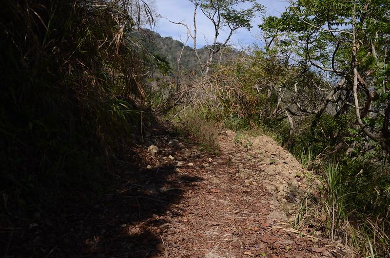 良楠山登山產道坍方路段
