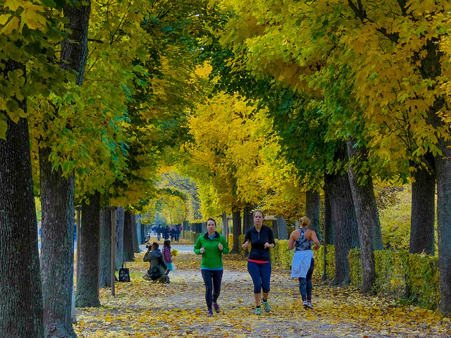 The joggers colorful world of Autumn season.