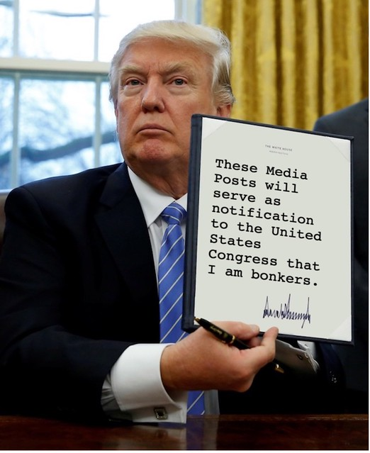 Trump_thesemediaposts