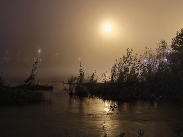 Foggy riverbank at night.