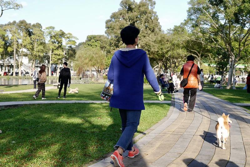 大湖公園 台北市內湖