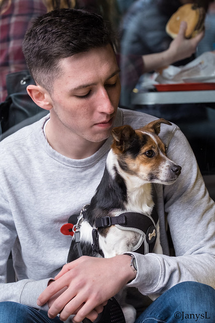 A young man and his dog