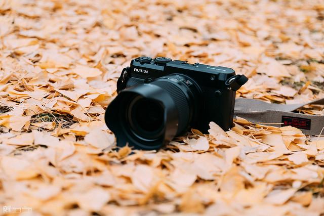 悠然自在的巡遊:Fujifilm GFX 50R | 58