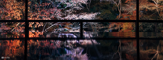 悠然自在的巡遊:Fujifilm GFX 50R | 55