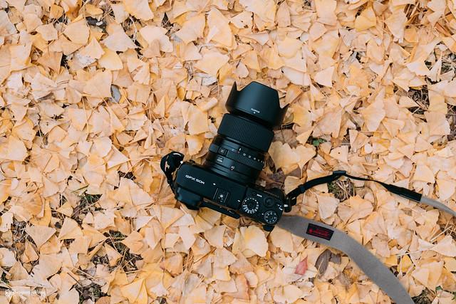 悠然自在的巡遊:Fujifilm GFX 50R | 01