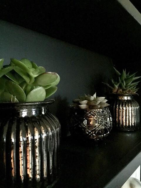 Vetplanten in armeluiszilver